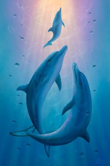 Rêve de dauphins